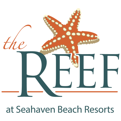 Panama City Beach Motorcycle Rally® Rooms | The Reef at Seahaven